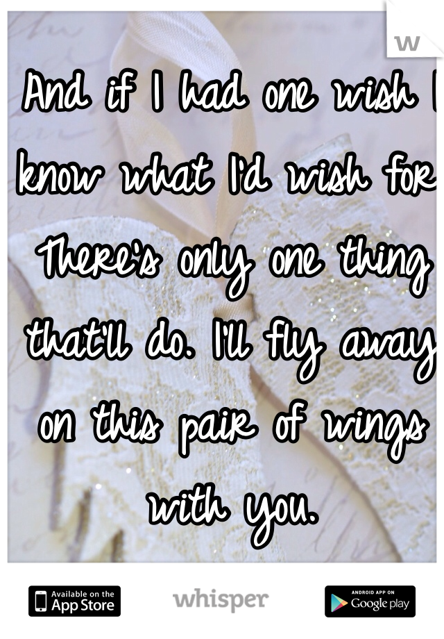 And if I had one wish I know what I'd wish for. There's only one thing that'll do. I'll fly away on this pair of wings with you.