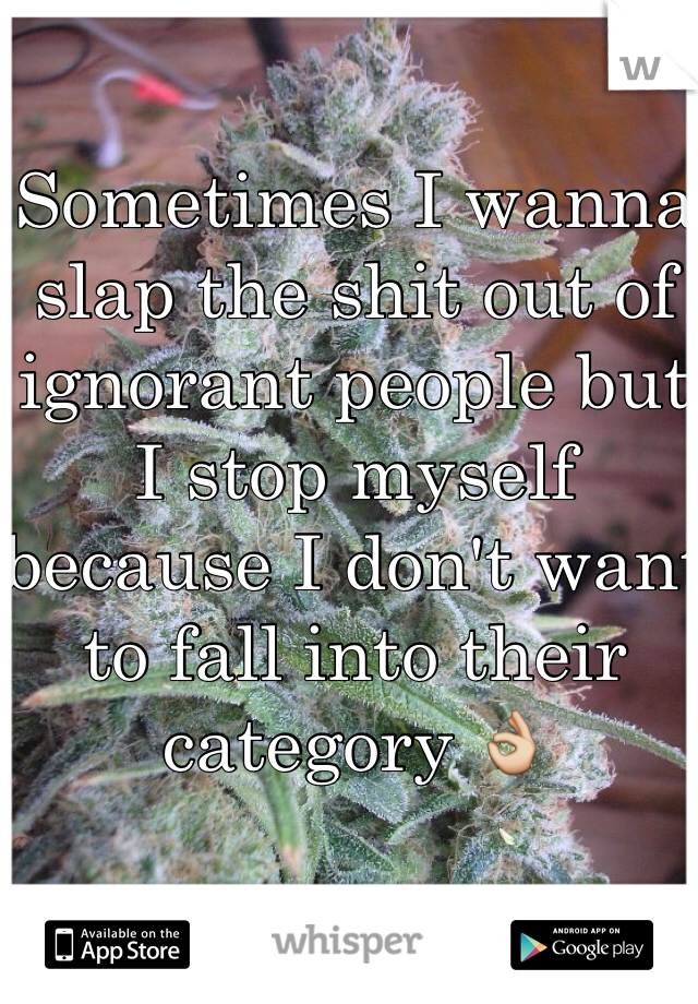 Sometimes I wanna slap the shit out of ignorant people but I stop myself because I don't want to fall into their category 👌