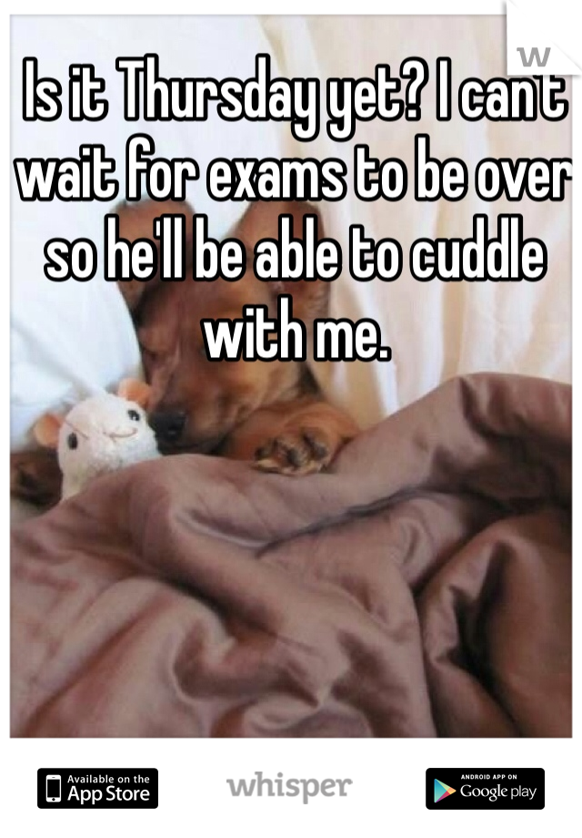Is it Thursday yet? I can't wait for exams to be over so he'll be able to cuddle with me.