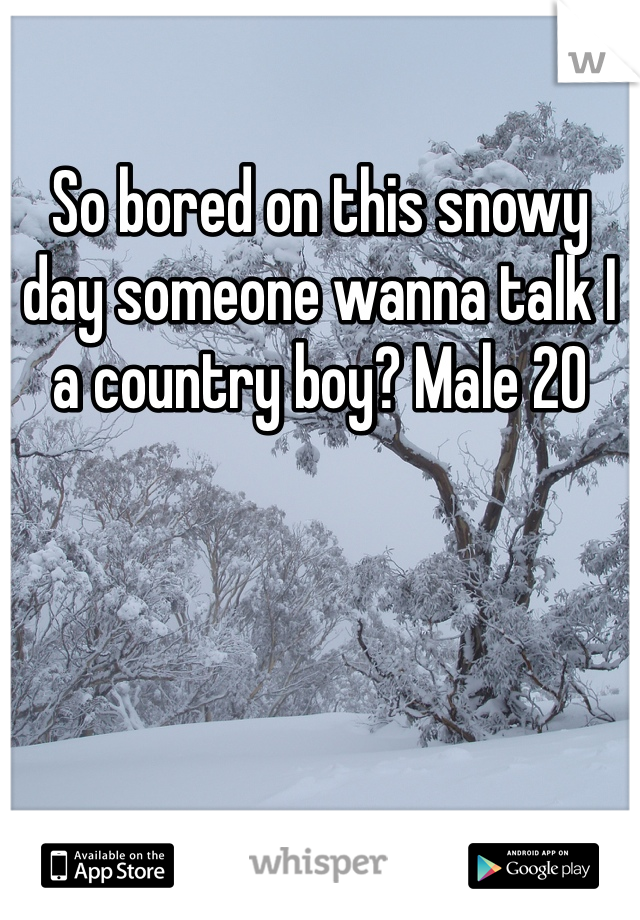 So bored on this snowy day someone wanna talk I a country boy? Male 20