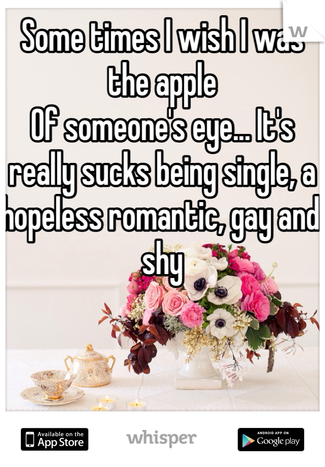 Some times I wish I was the apple Of someone's eye... It's really sucks being single, a hopeless romantic, gay and shy