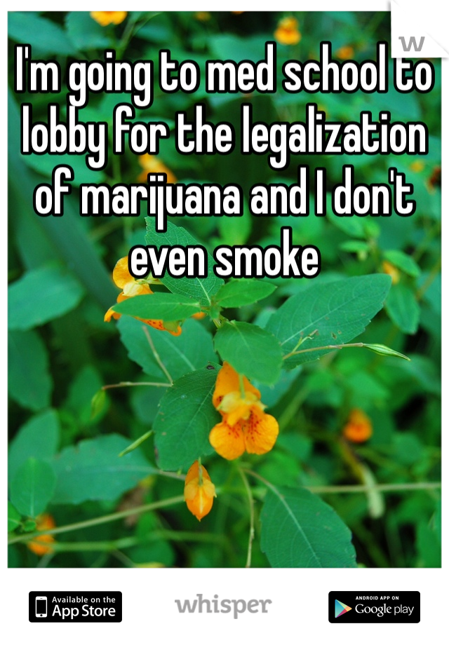 I'm going to med school to lobby for the legalization of marijuana and I don't even smoke