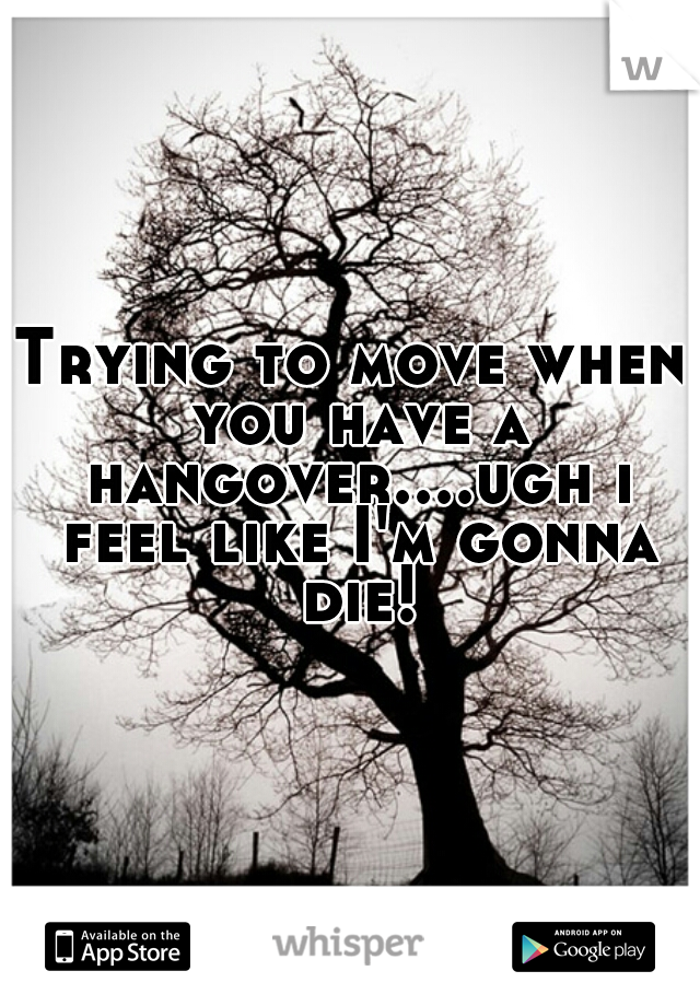 Trying to move when you have a hangover....ugh i feel like I'm gonna die!