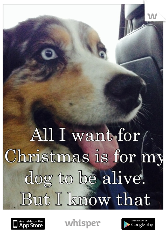 All I want for Christmas is for my dog to be alive.  But I know that can't happen