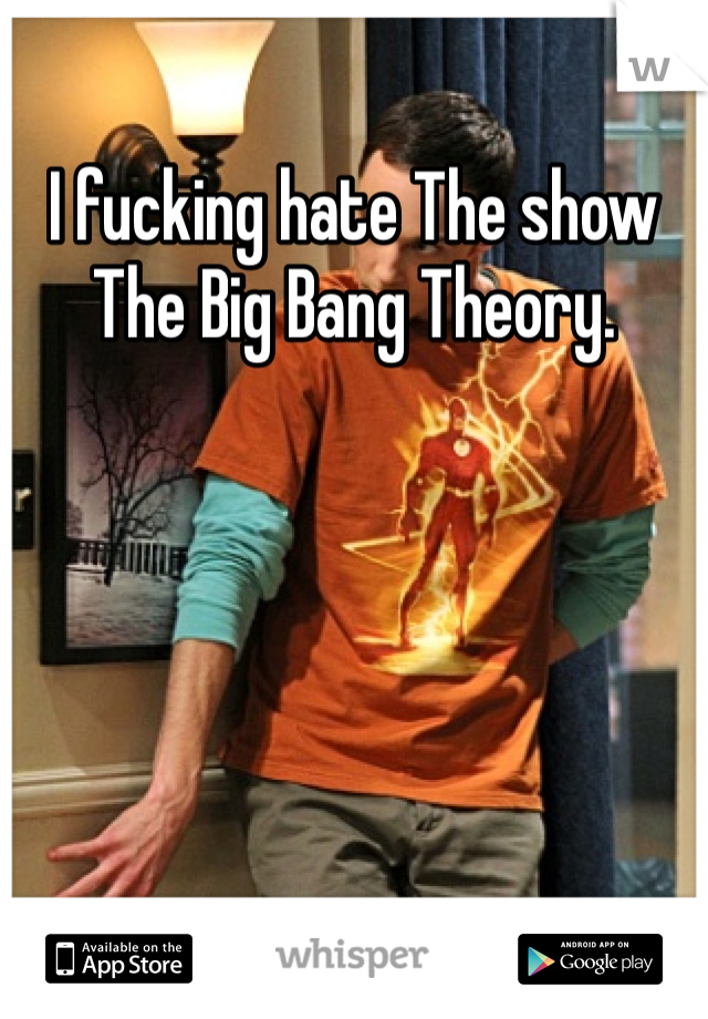 I fucking hate The show The Big Bang Theory.