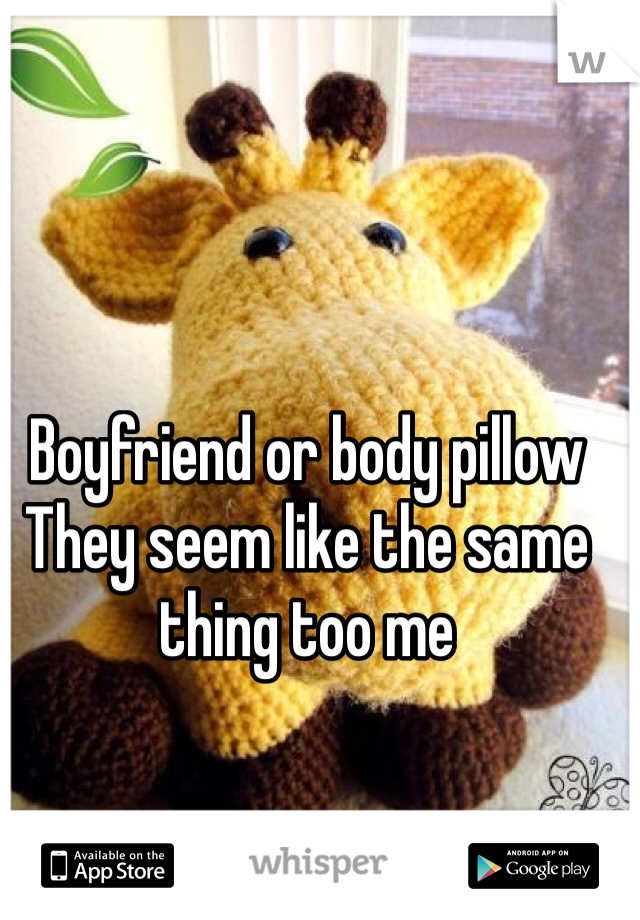 Boyfriend or body pillow They seem like the same  thing too me