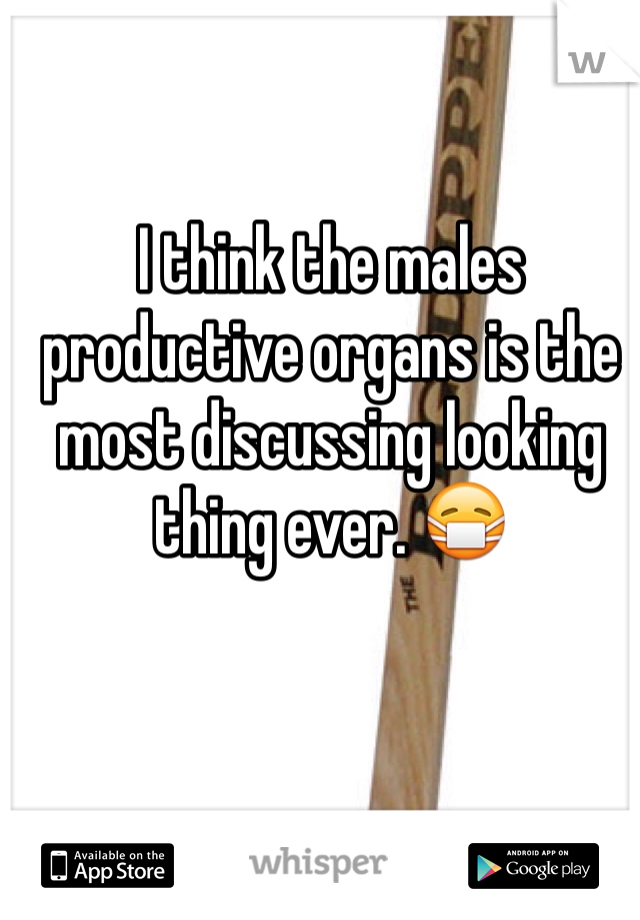 I think the males productive organs is the most discussing looking thing ever. 😷