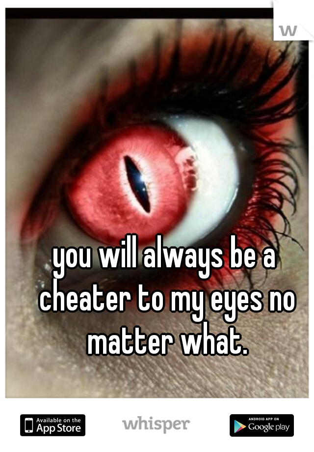 you will always be a cheater to my eyes no matter what.