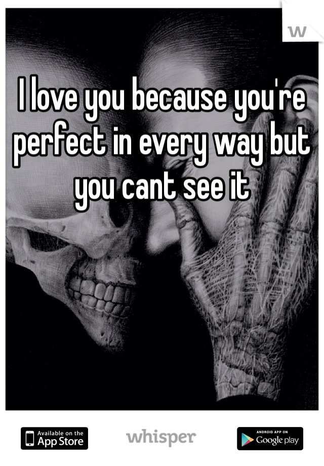 I love you because you're perfect in every way but you cant see it
