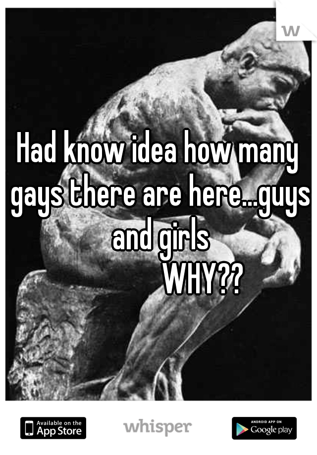 Had know idea how many gays there are here...guys and girls               WHY??