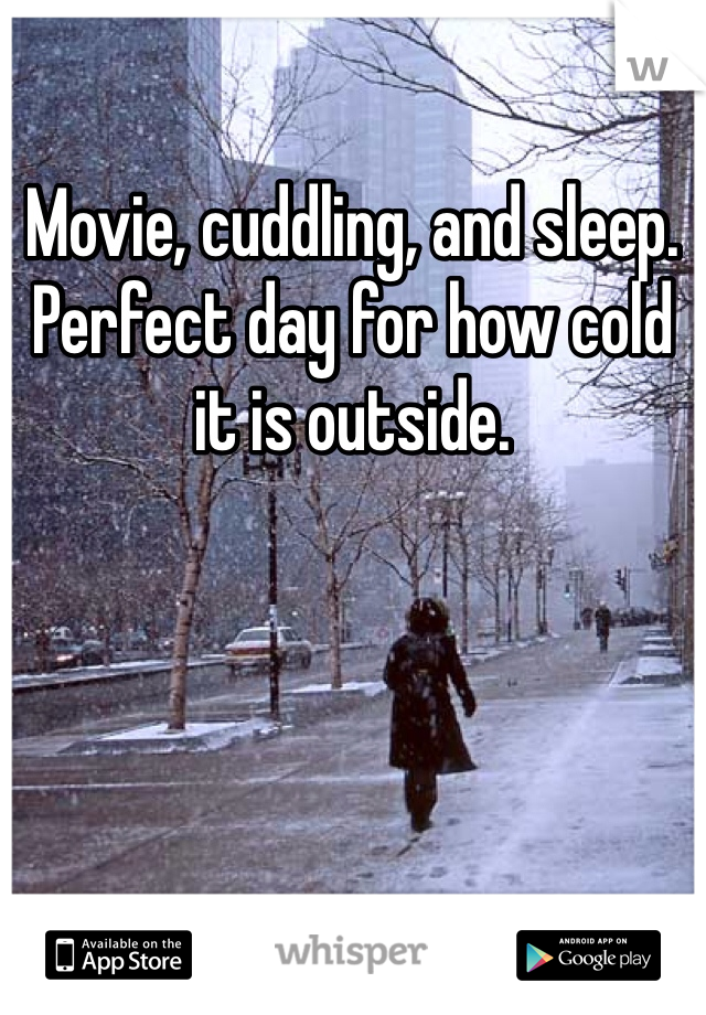 Movie, cuddling, and sleep. Perfect day for how cold it is outside.