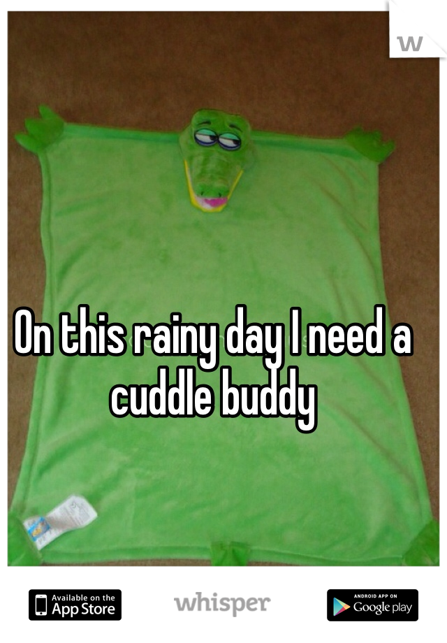 On this rainy day I need a cuddle buddy