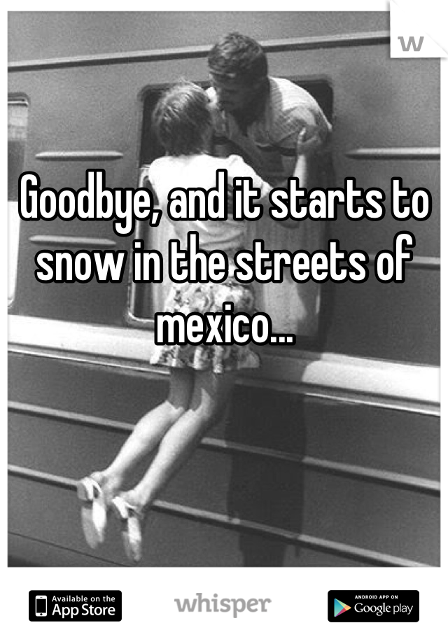Goodbye, and it starts to snow in the streets of mexico...