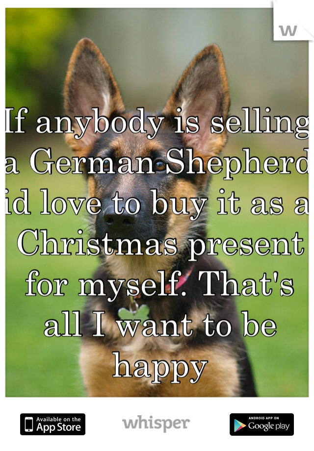 If anybody is selling a German Shepherd id love to buy it as a Christmas present for myself. That's all I want to be happy