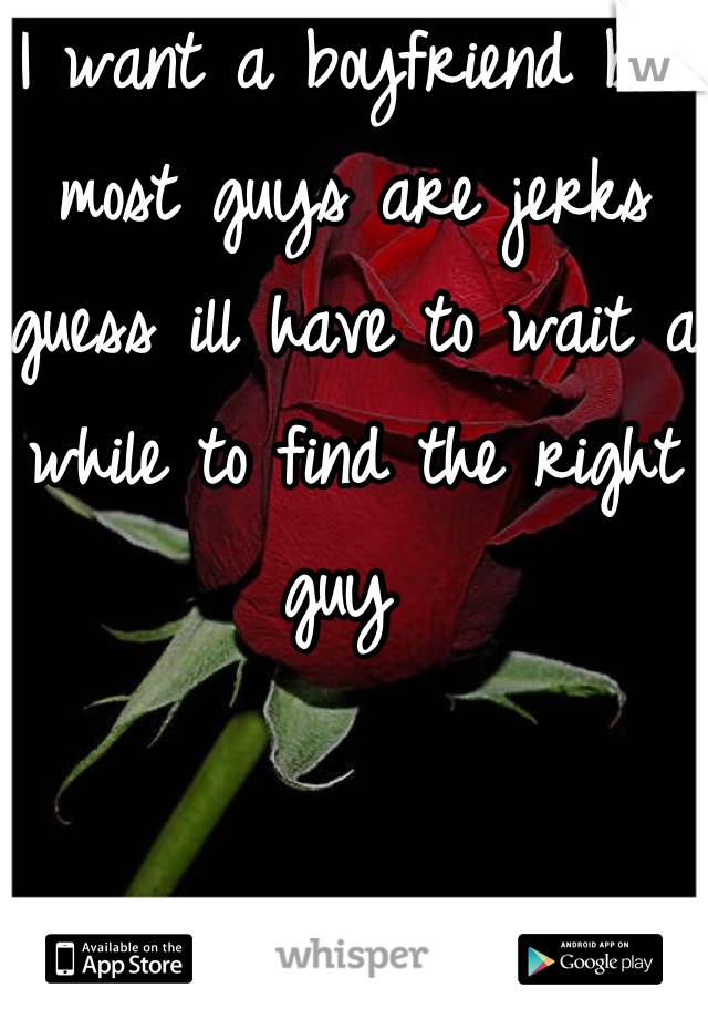 I want a boyfriend but most guys are jerks guess ill have to wait a while to find the right guy