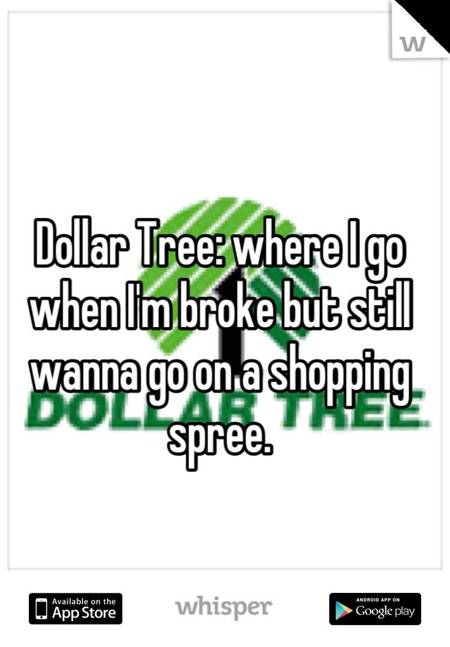 Dollar Tree: where I go when I'm broke but still wanna go on a shopping spree.