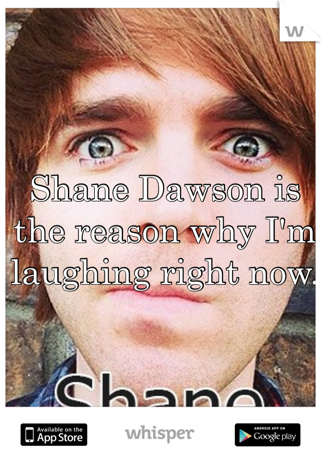 Shane Dawson is the reason why I'm laughing right now.