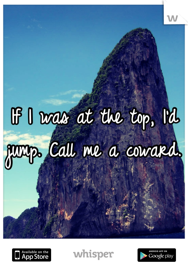If I was at the top, I'd jump. Call me a coward.