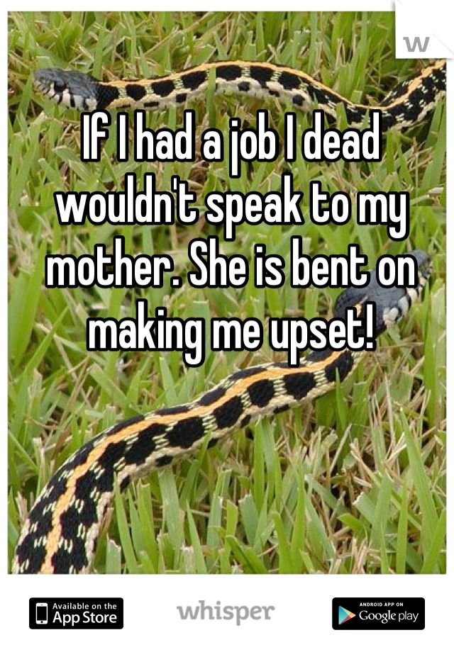 If I had a job I dead wouldn't speak to my mother. She is bent on making me upset!