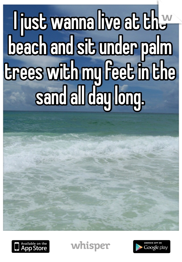 I just wanna live at the beach and sit under palm trees with my feet in the sand all day long.
