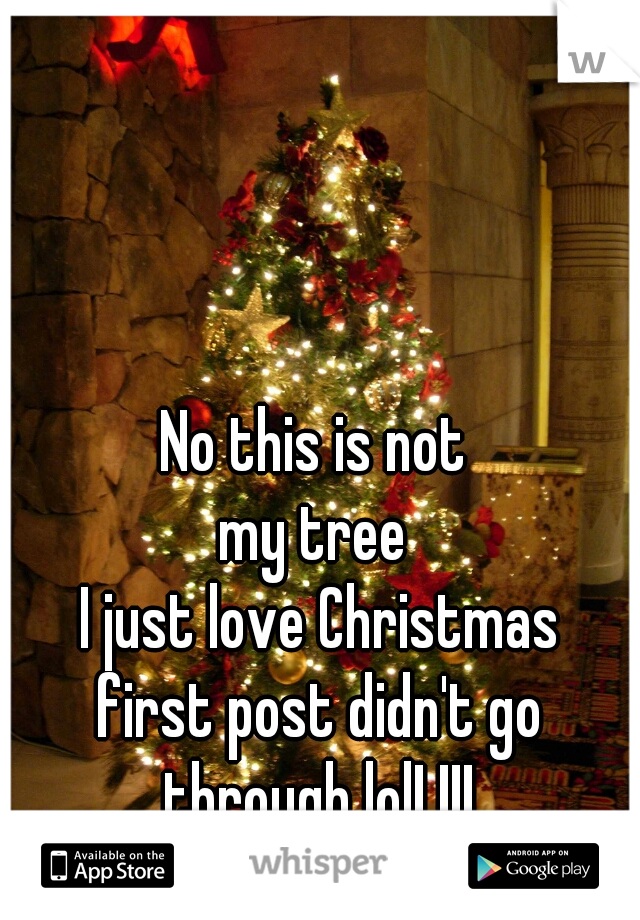 No this is not  my tree  I just love Christmas first post didn't go through lol! !!!