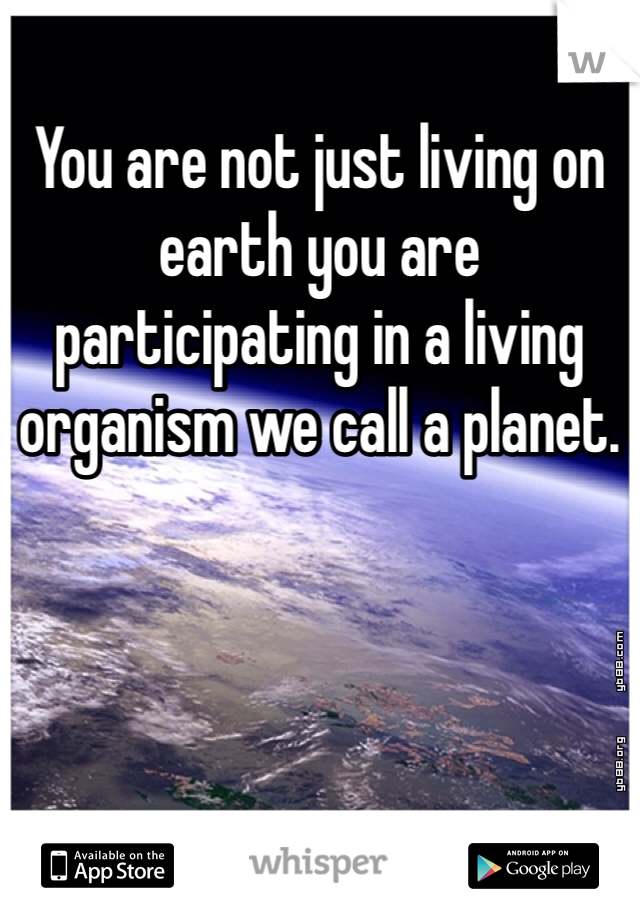 You are not just living on earth you are participating in a living organism we call a planet.