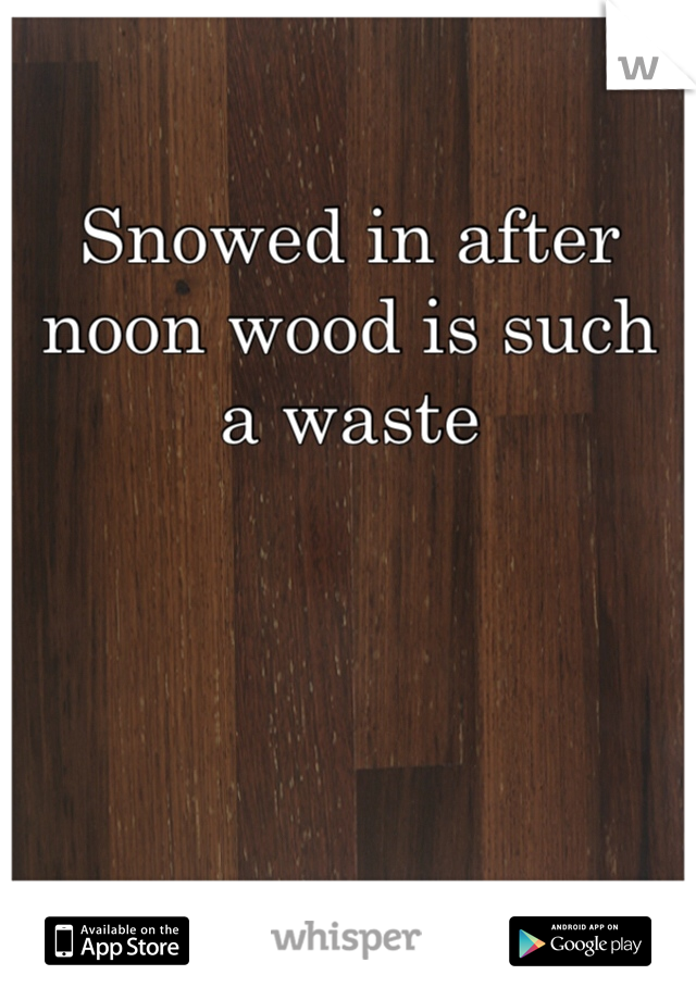 Snowed in after noon wood is such a waste
