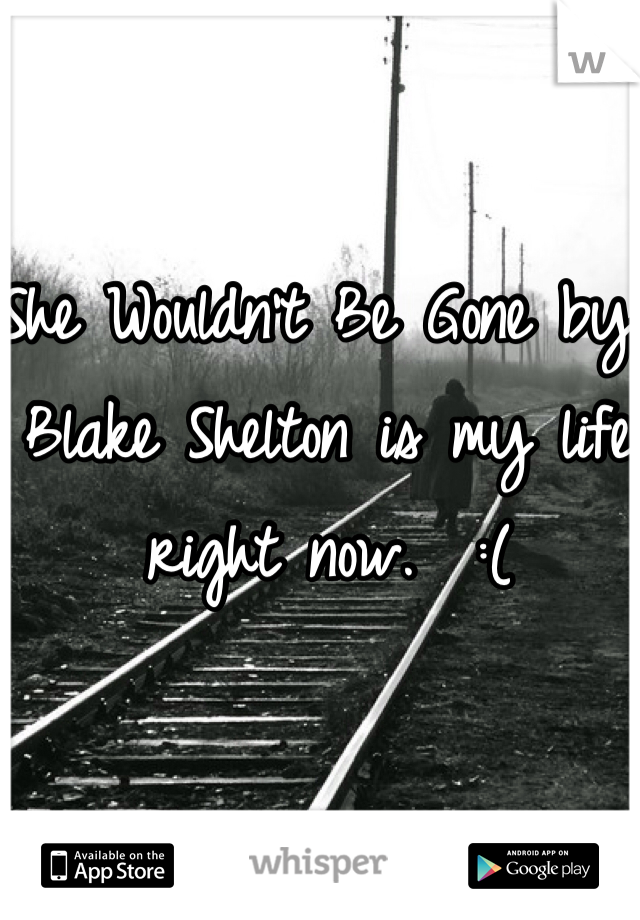 She Wouldn't Be Gone by Blake Shelton is my life right now.  :(