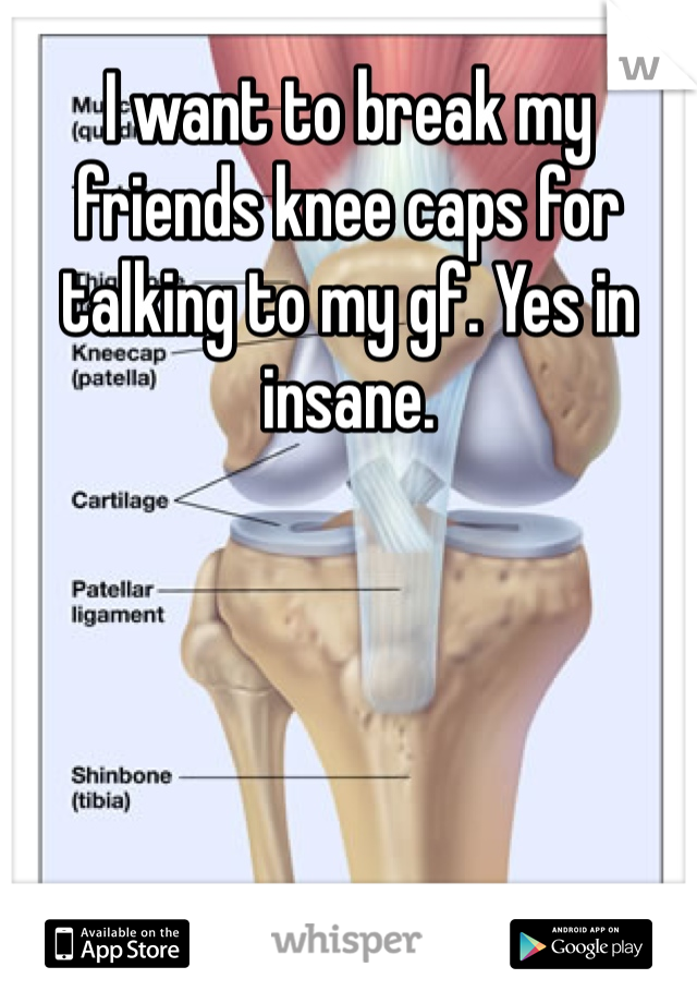 I want to break my friends knee caps for talking to my gf. Yes in insane.