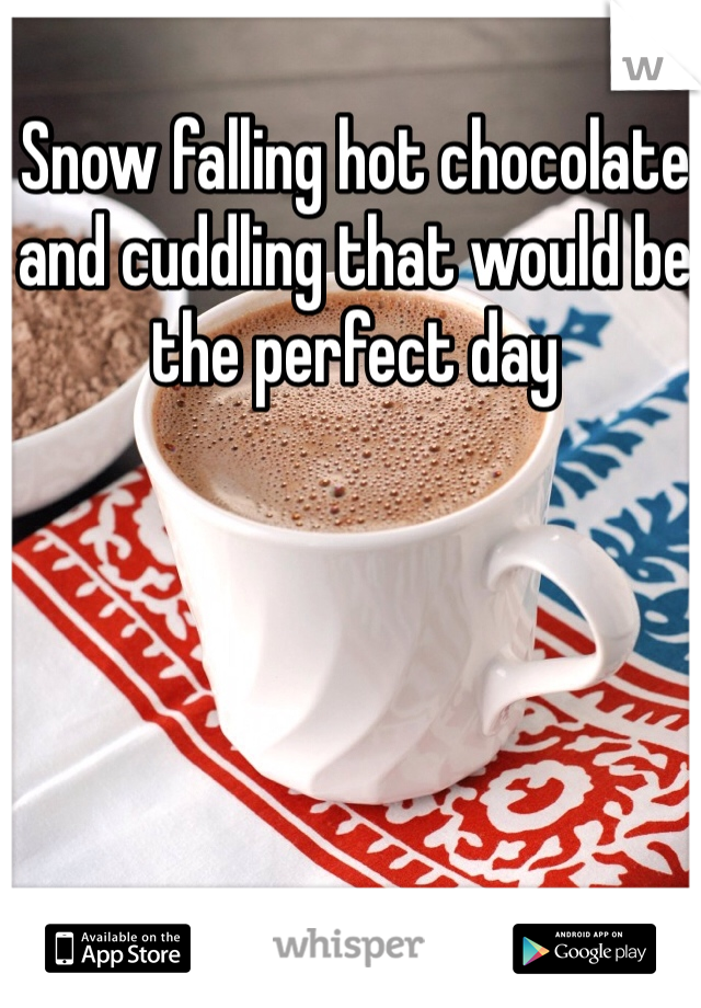 Snow falling hot chocolate and cuddling that would be the perfect day