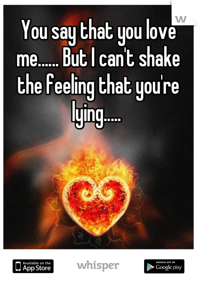 You say that you love me...... But I can't shake the feeling that you're lying.....