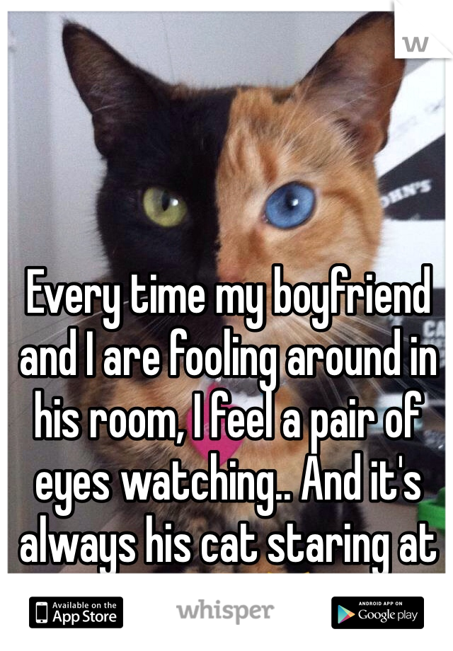 Every time my boyfriend and I are fooling around in his room, I feel a pair of eyes watching.. And it's always his cat staring at us. 😳😹