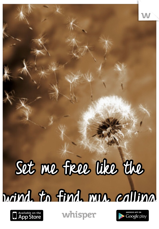 Set me free like the wind to find my calling