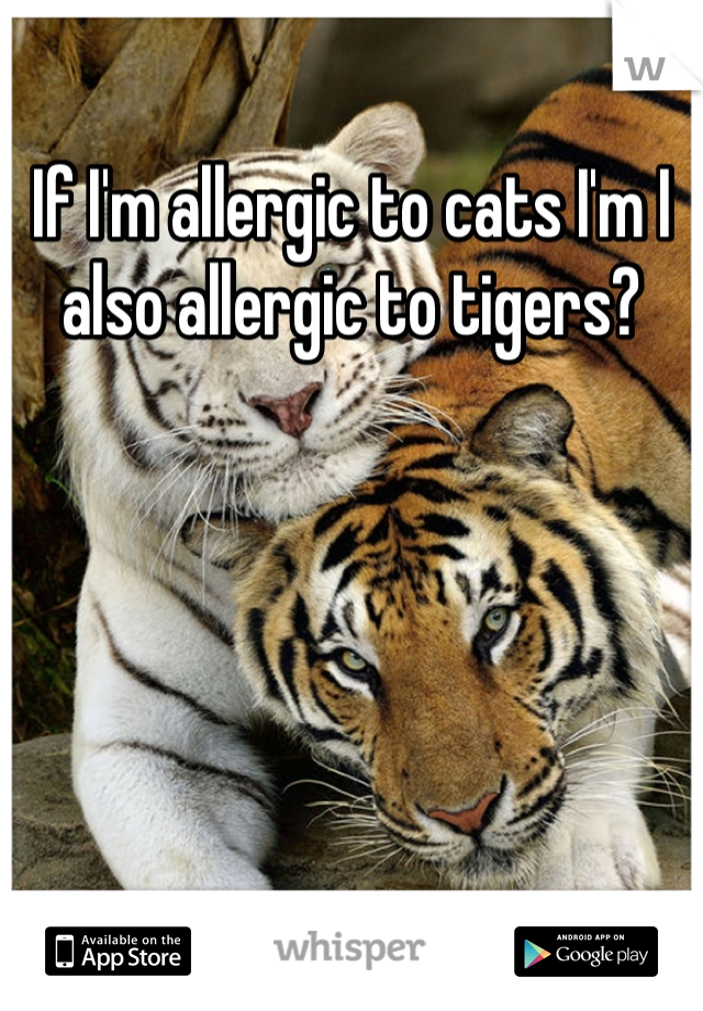 If I'm allergic to cats I'm I also allergic to tigers?