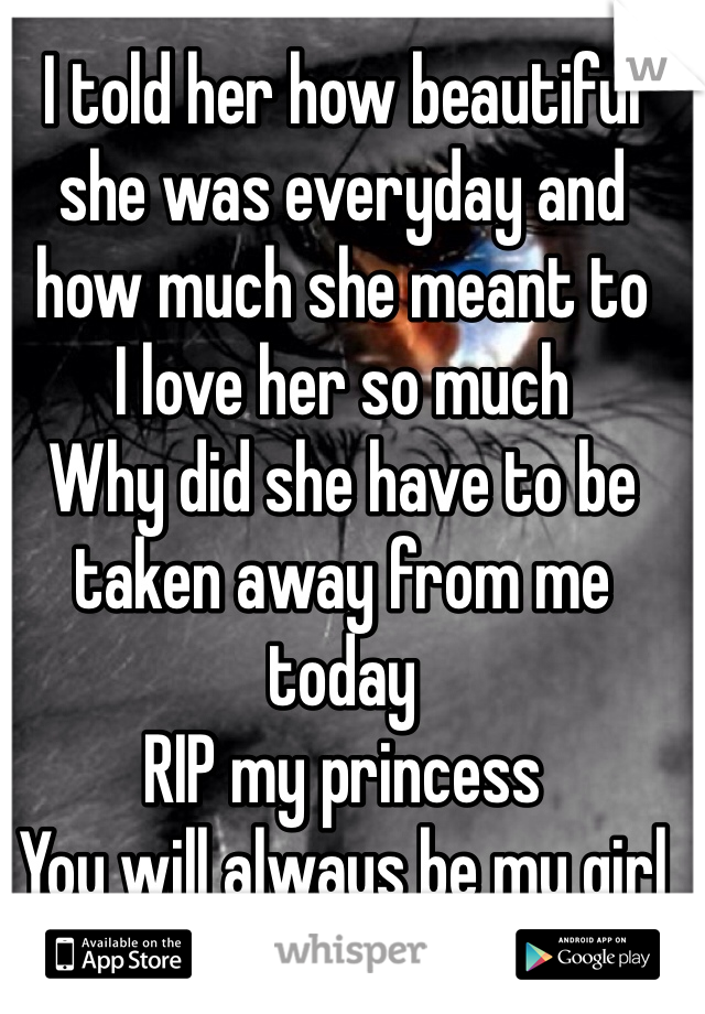 I told her how beautiful she was everyday and how much she meant to  I love her so much  Why did she have to be taken away from me today  RIP my princess  You will always be my girl