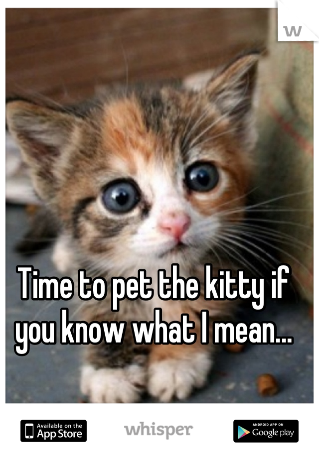 Time to pet the kitty if you know what I mean...