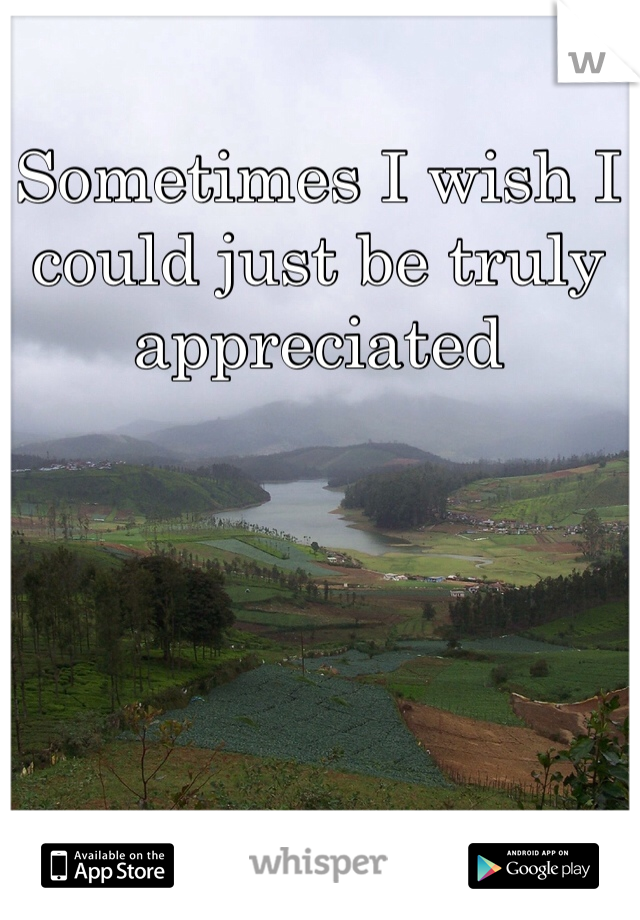 Sometimes I wish I could just be truly appreciated