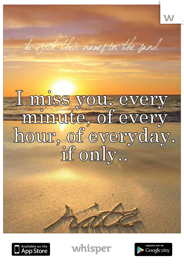 I miss you. every minute, of every hour, of everyday. if only..