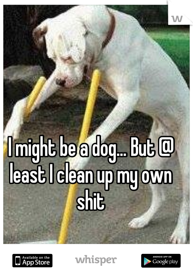I might be a dog... But @ least I clean up my own shit