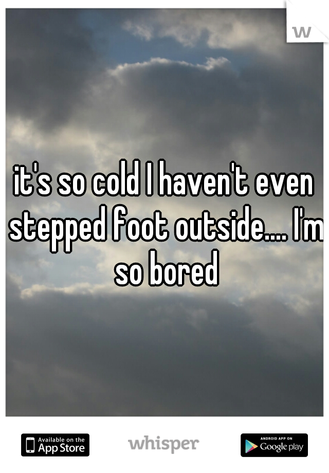 it's so cold I haven't even stepped foot outside.... I'm so bored