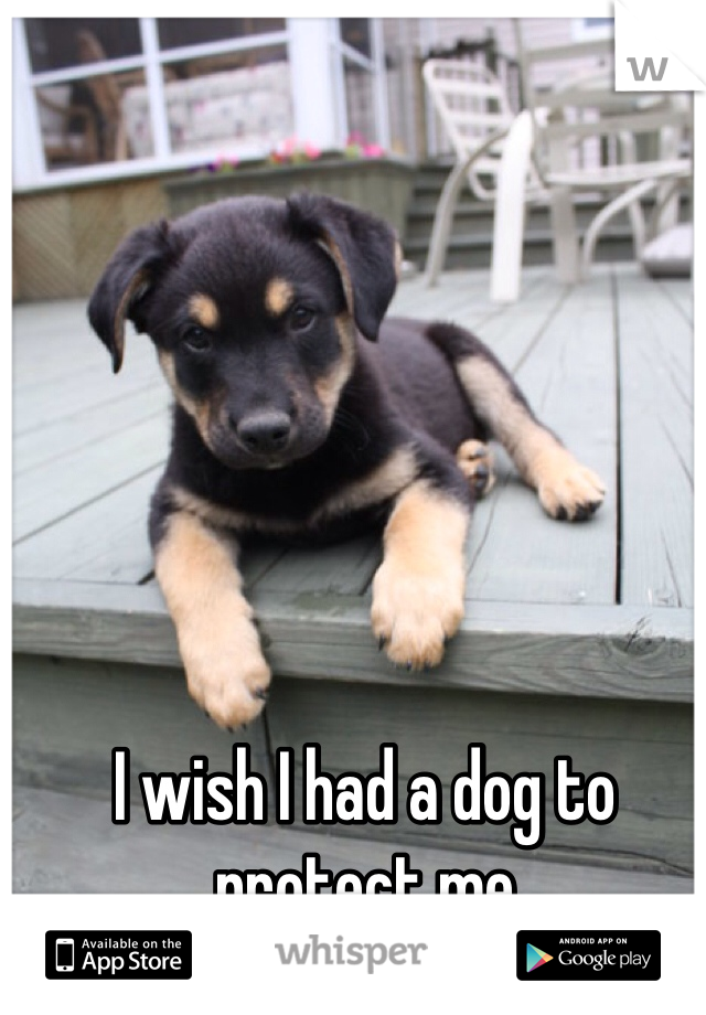 I wish I had a dog to protect me