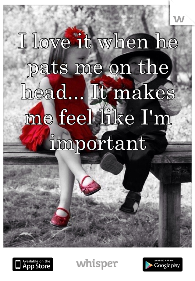 I love it when he pats me on the head... It makes me feel like I'm important