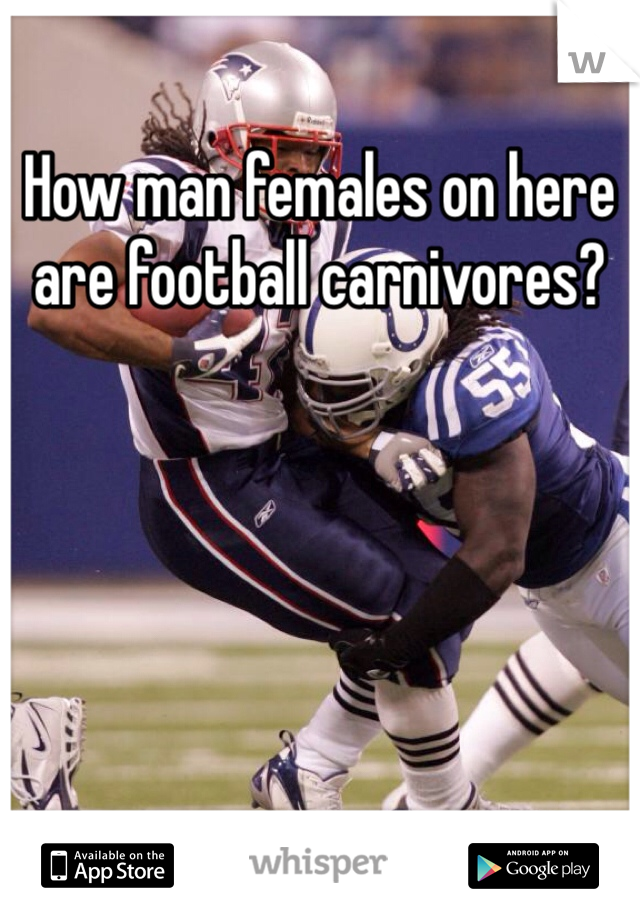How man females on here are football carnivores?