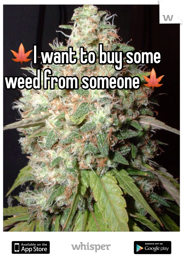 🍁I want to buy some weed from someone🍁