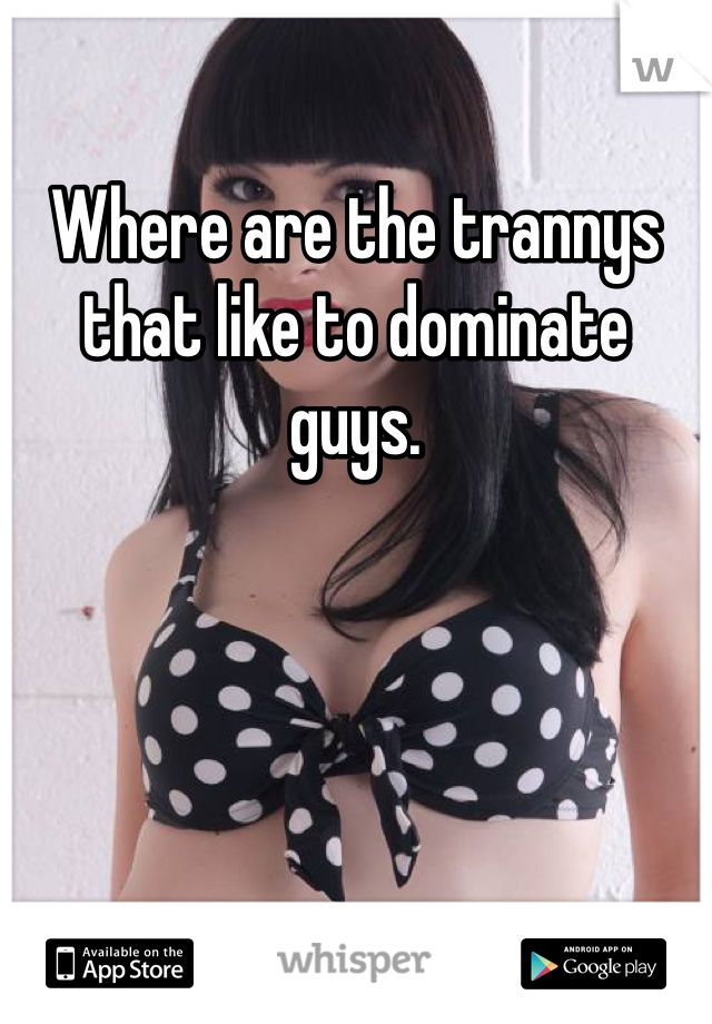 Where are the trannys that like to dominate guys.