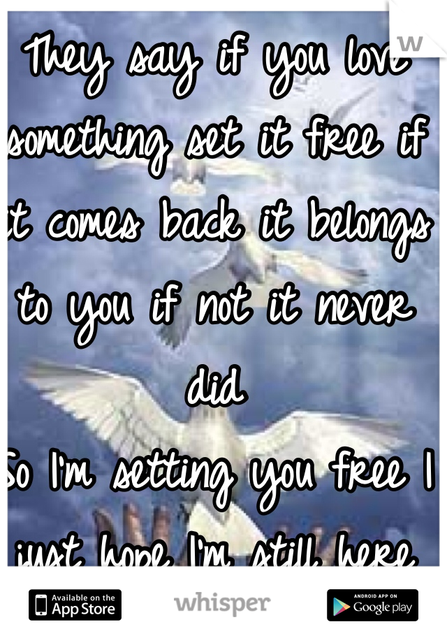 They say if you love something set it free if it comes back it belongs to you if not it never did  So I'm setting you free I just hope I'm still here when you get back