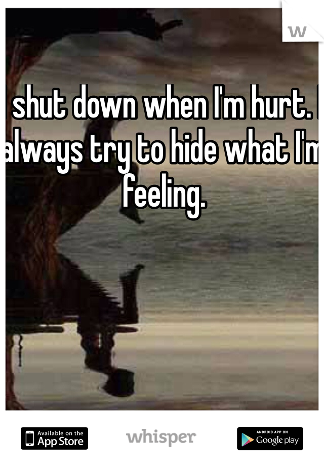 I shut down when I'm hurt. I always try to hide what I'm feeling.
