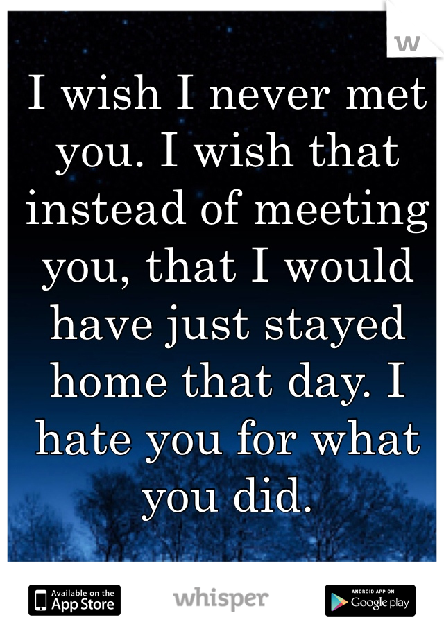 I wish I never met you. I wish that instead of meeting you, that I would have just stayed home that day. I hate you for what you did.