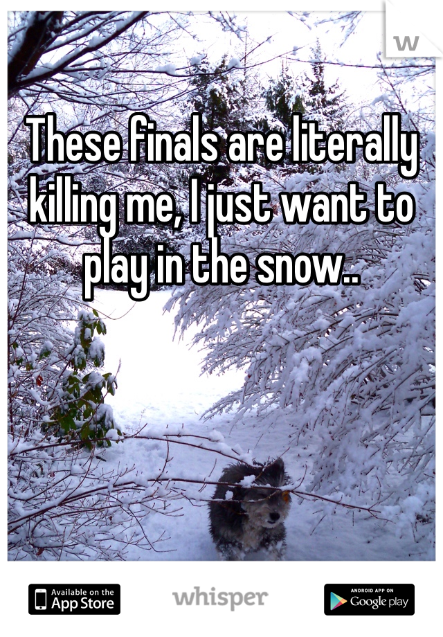 These finals are literally killing me, I just want to play in the snow..