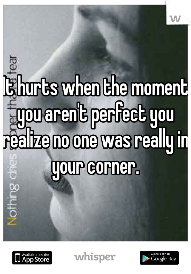 It hurts when the moment you aren't perfect you realize no one was really in your corner.